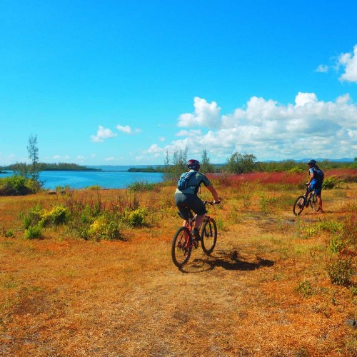Mountainbiking - Parc National de Bras d'Eau